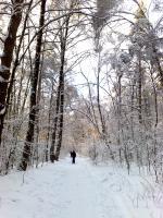 Helene и atticus где-то там на лыжне)